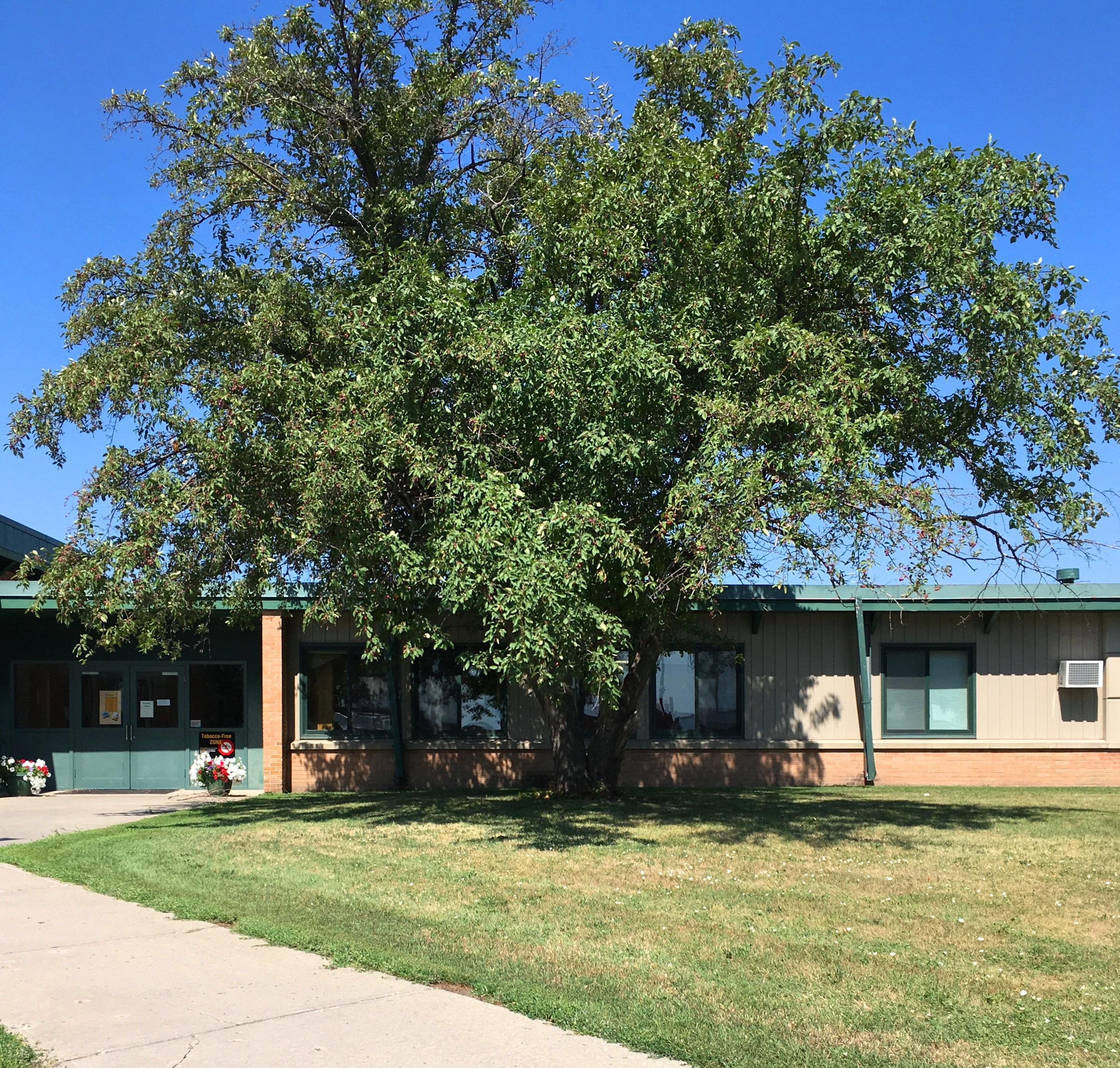 Peter J. Boe Elementary School